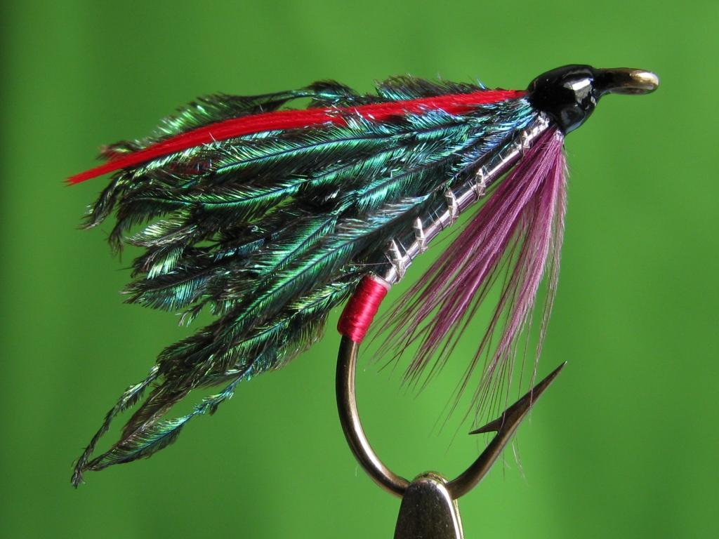 Alexandra wet fly british origin great fishing fly for Wet fly fishing