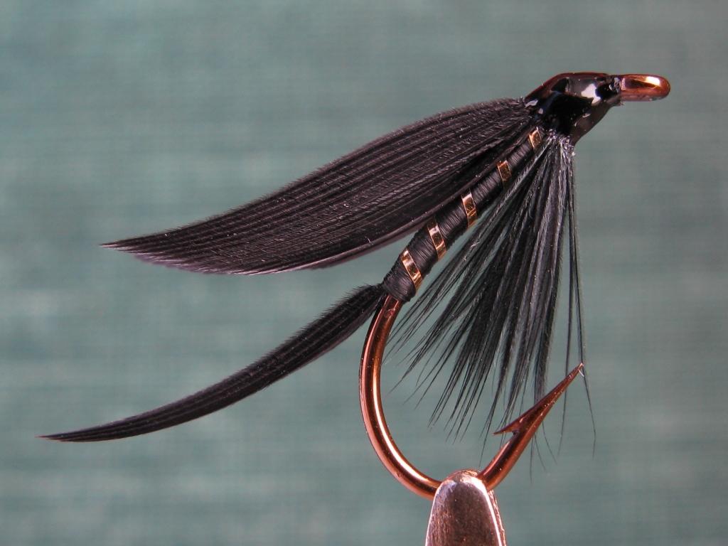 June 2010 don bastian wet flies for Fly fishing flies