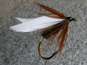 image: Coachman wet fly