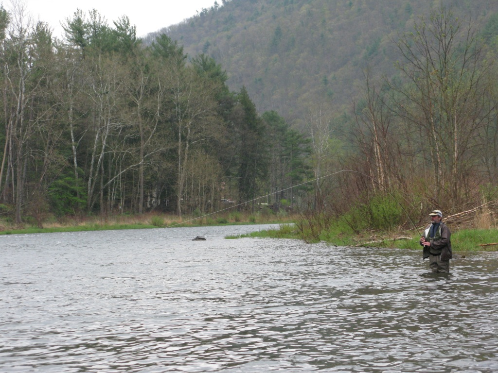 Big pine creek stream report don bastian wet flies for Trout fishing pa