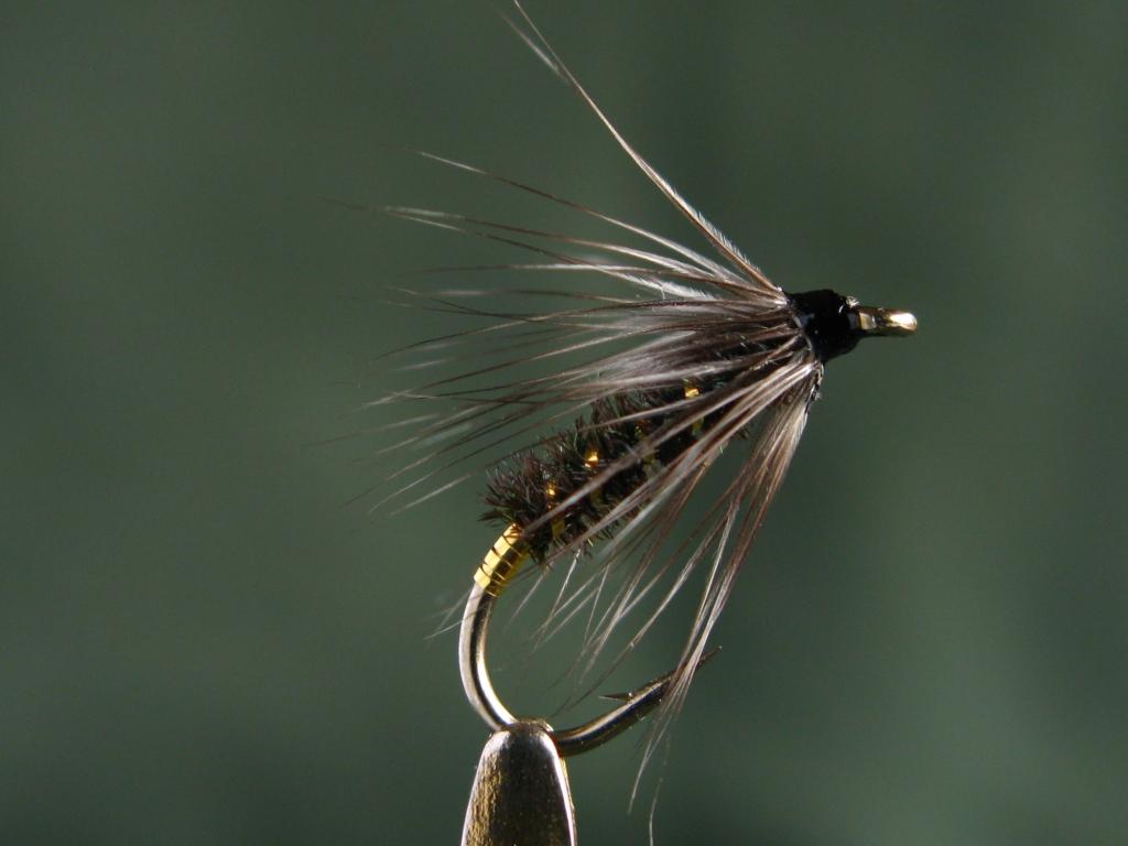 March | 2013 | Don Bastian Wet Flies