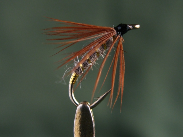Sanctuary - size #10 - soft hackle wet fly.