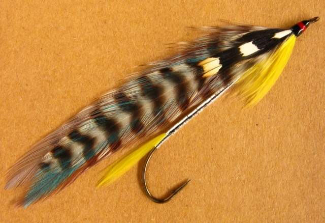 Don's Special - tied and photographed by Don Bastian. The hook is a Gaelic Supreme Martinek / Stevens Rangeley style streamer, No. 2 - 8x long.