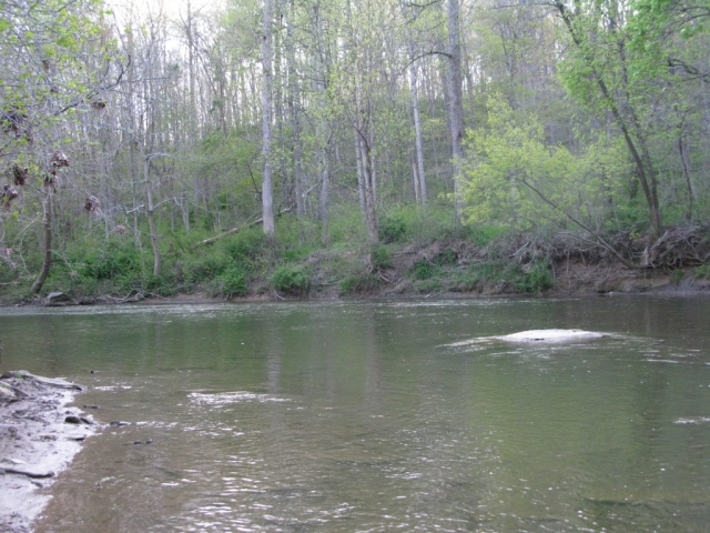 Looking upstream at the lower end of a big pool.
