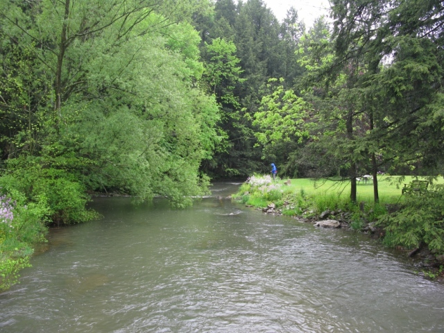 View of Spruce Creek downstream from the covered bridge.