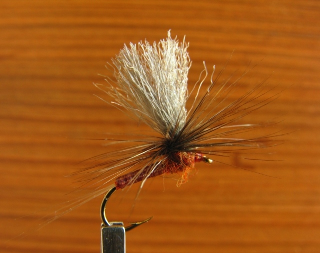 #14 Hendrickson - Red Quill Parachute, tied with Sexi-Floss, etc. abdomen.