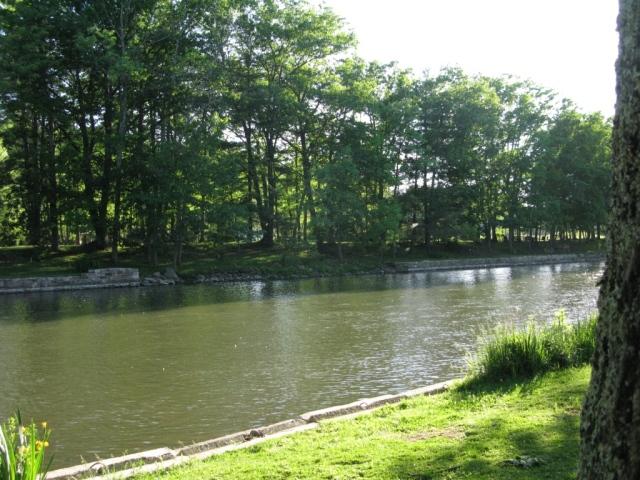 Penn's Creek, May 25th,near Weikert. Each light greenish-yellow spot on the water is a green drake dun.