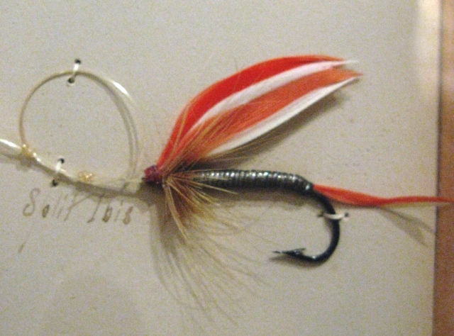 Split Ibis from the 1893 Orvis fly display.