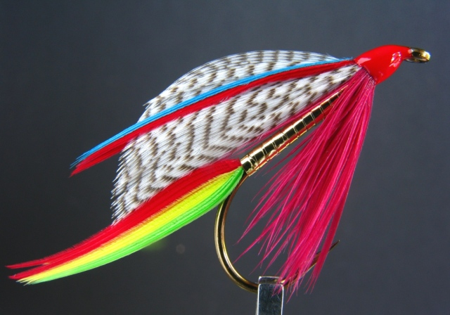 Golden Doctor wet fly -
