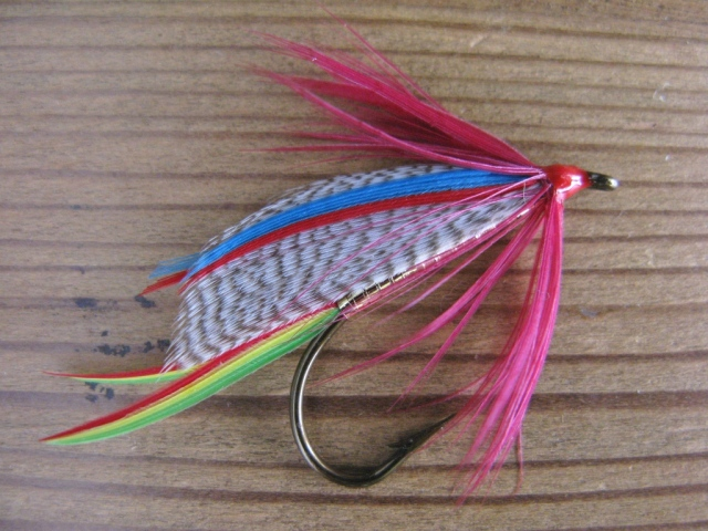 Golden Doctor - this version has a full collar hackle applied after the wing was mounted.