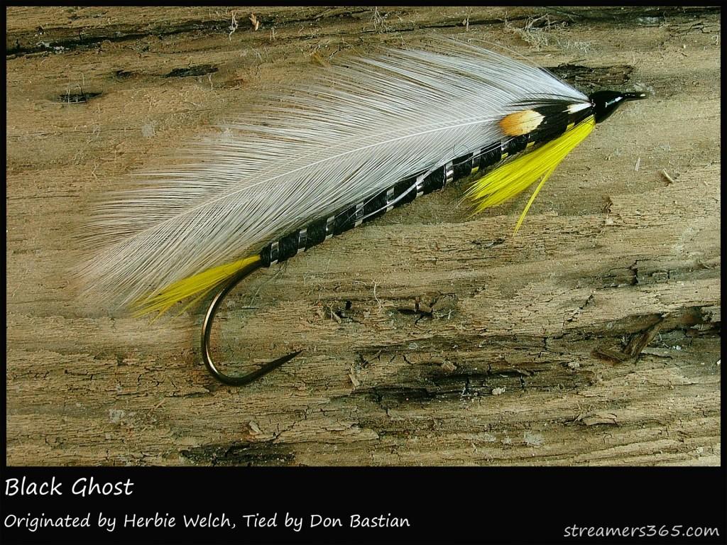 November 171 2013 171 Don Bastian Wet Flies