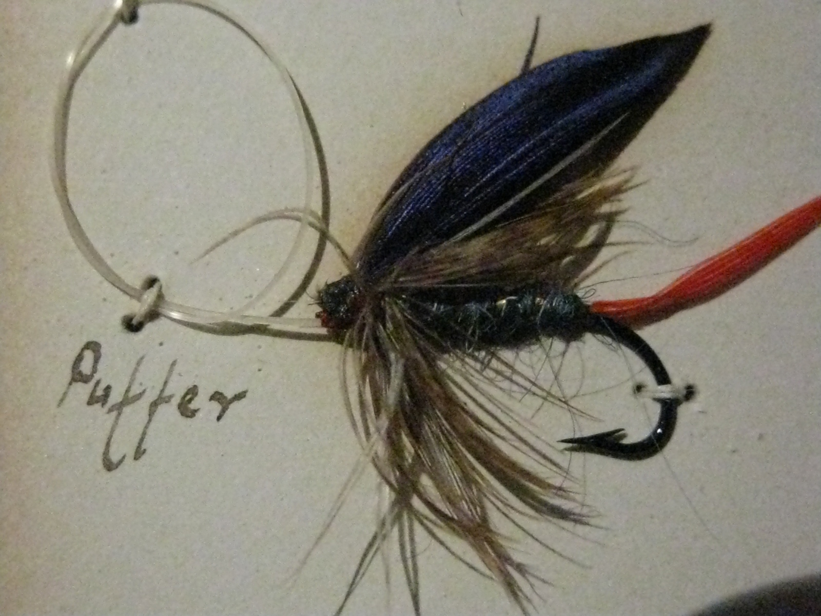 American museum of fly fishing don bastian wet flies for Wet fly fishing