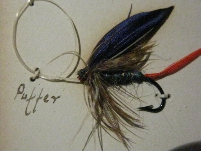 The Puffer wet fly, an Adirondack trout fly pattern.