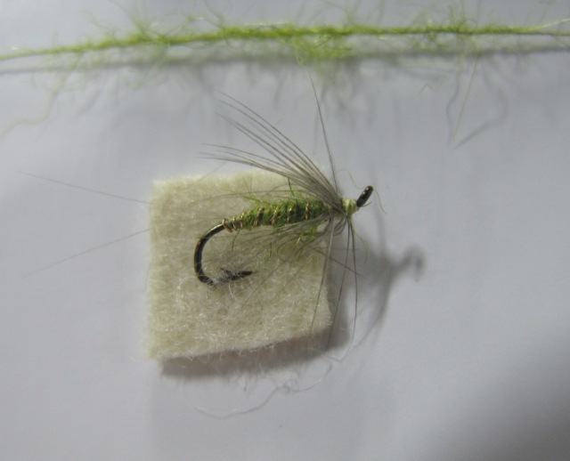Olive Soft-hackle Wet Fly, dressed by Lance Hidy. Photo by Don Bastian.