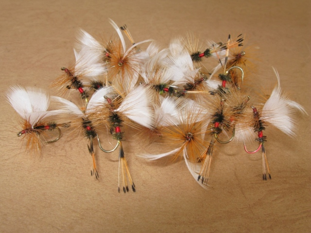 Two dozen Fanwing Royal Coachman Drys, #8, #10, and #12.