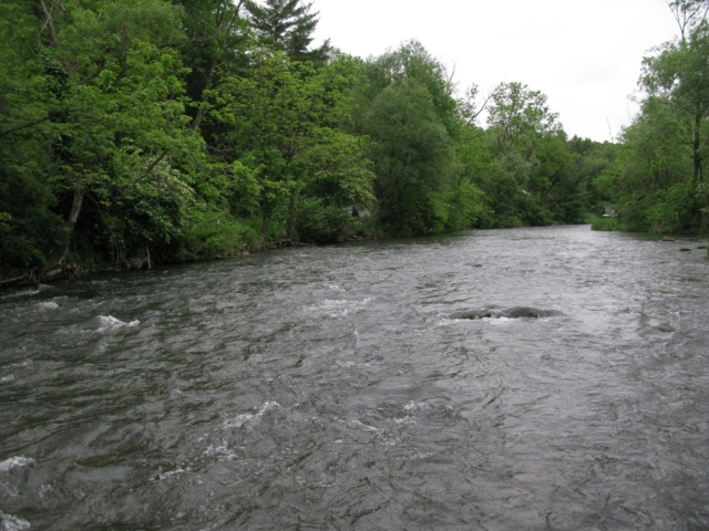 Section of riffles, pockets, seams 0- shallow, but the trout are here.